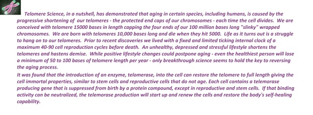 ChromosomeTelomereBlog
